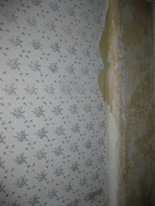 Peeling Hand Stenciled Wallpaper
