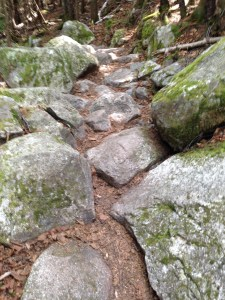 Boulders and rocks, rocks and boulders on the Osceola Trail down to the parking lot on Tripoli Road.