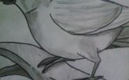 dibujos a lapiz bonitos (12)