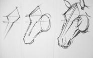 dibujos a lapiz caballos (1)