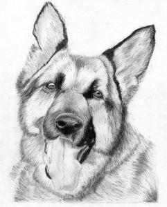 Dibujos a lápiz con sombras (3)