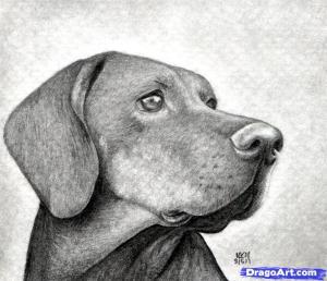 Dibujos a lápiz con sombras (5)