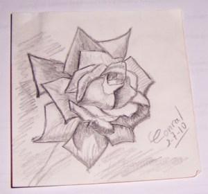 Dibujos a lápiz de flores (2)
