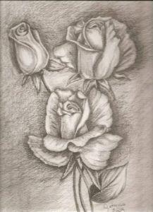 Dibujos a lápiz de flores (8)