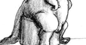 15 dibujos a lápiz básicos (10)