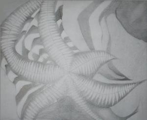 15 dibujos a lápiz básicos (8)