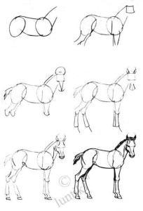 Primeros pasos en el dibujo a lápiz (4)