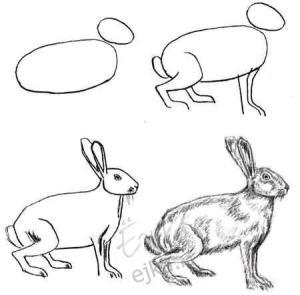15 ideas simples para comenzar a dibujar a lápiz (9)