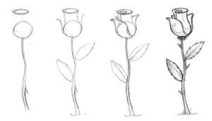 10 Dibujos simples y bonitos (1)