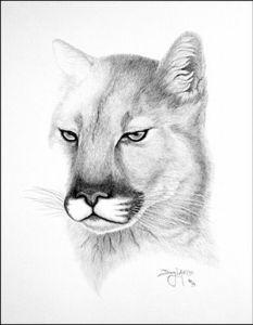 10 Hermosos dibujos a lápiz de animales (4)