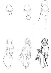 11 Nuevos dibujos a lápiz para principiantes (11)