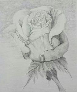 10 dibujos a lápiz de rosas para tatuajes (6)