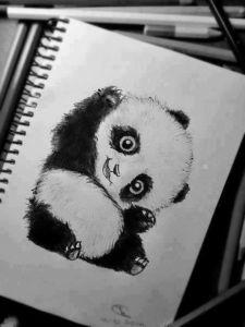 10 nuevos dibujos a lápiz de animales (1)