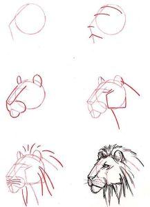 10 nuevos dibujos a lápiz de animales (6)