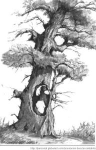 11 Nuevos dibujos a lápiz de árboles (2)