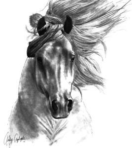 11 dibujos a lápiz de caballos (11)