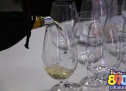 Curso de Degustação de Vinhos e Espumantes ocorre neste sábado em Bento