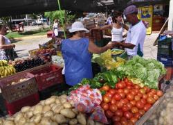 Encontro qualifica produtores de hortifrutigranjeiros em Caxias do Sul