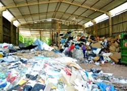 Recicladoras de Bento tem de efetuar readequações para voltar a receber recursos