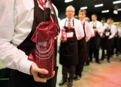 15ª edição do Concurso Nacional de Vinhos e Destilados de Bruxelas ocorre em Bento