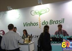 Vídeo: Confira um balanço da participação dos vinhos do Brasil no Expovinis 2017