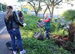 Meio Ambiente promove Mutirão de Limpeza no Arroio Barracão sábado