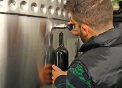 Avaliação Nacional de Vinhos em fase de coleta