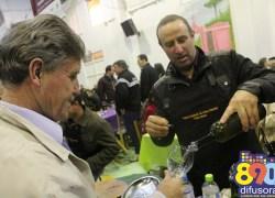 Projeto de regularização do vinho colonial deve legalizar primeiras cantinas em Bento até o fim de 2017