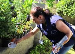 Prefeitura de Garibaldi seleciona agentes de controle da dengue