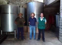 Agricultura realiza vistoria em agroindústria de vinho colonial em Bento