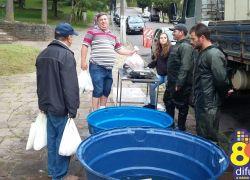 Feira do Peixe Vivo ocorre sábado em Bento