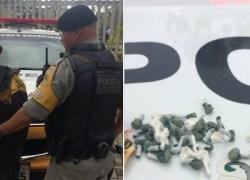 Policiais Militares do 3° BRBM prendem homem por tráfico de drogas em Flores da Cunha
