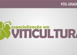 Abertas as inscrições para Especialização em Viticultura no campus Bento do IFRS