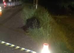 Homem é morto no bairro Três Lagoas em Garibaldi