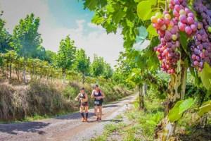 maratona_do_vinho_018