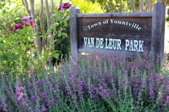 Van De Leur Park in Yountville, California