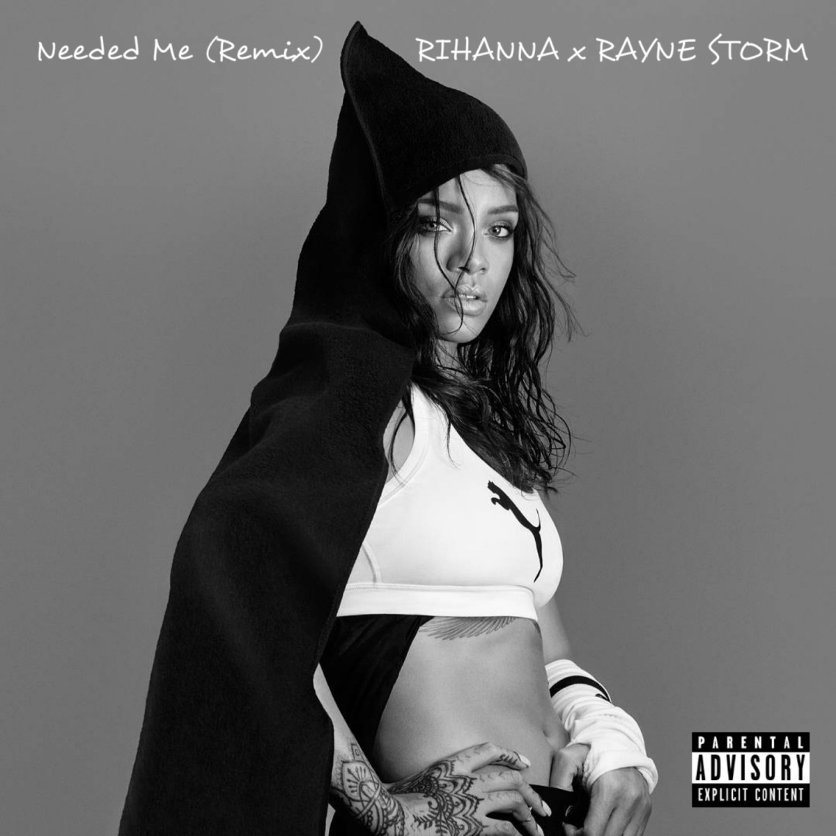 Rihanna - Needed Me (Remix) ft. Rayne Storm
