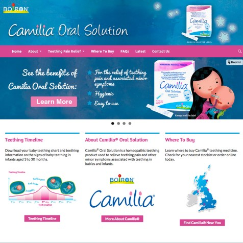 Web Design and Digital Marketing Strategy, Camilia