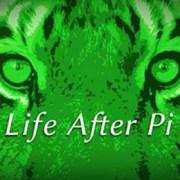 Life-after-Pi-Bild