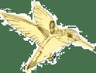 dillybird2