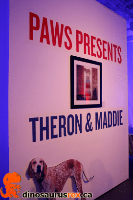 3rd Annual Paws for the Cause Gala