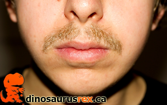 Karl-dinosaurus-rex-day-31-week-5-movemeber-2012-moustache-mustache-copy