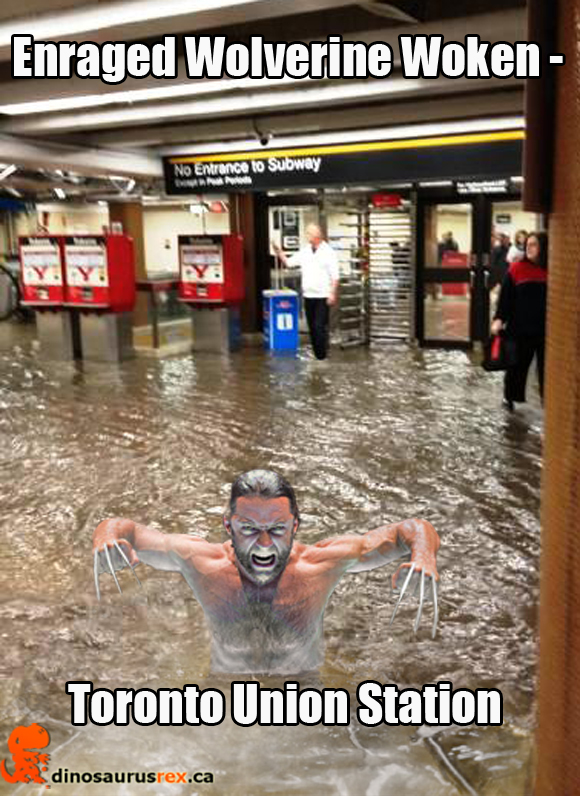 enraged-wolverine-flooding-toronto-union-station