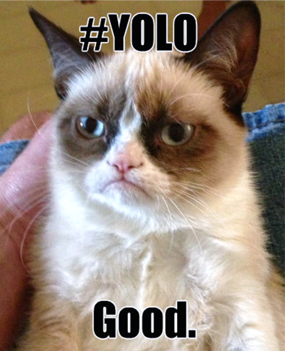 yolo-angry-cat-meme-good-happy-you-only-live-once