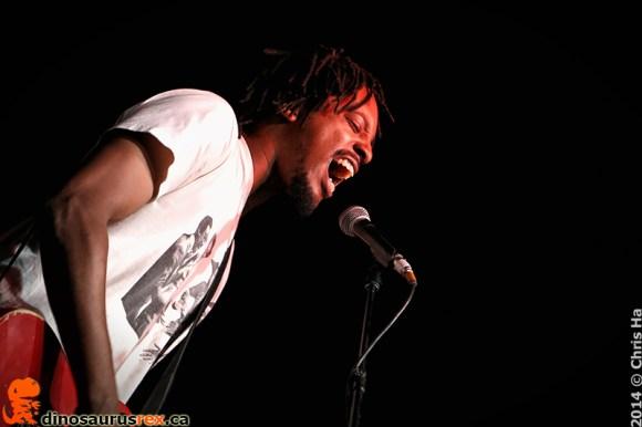 dinosaurus-rex-Joe-Black-Lewis-Toronto-urban-roots-festival-2014-TURF-003