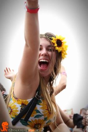 VELD-Music-Festival-2014