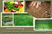Da promotes organic farming