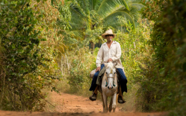 man on a horse in vinales cuba