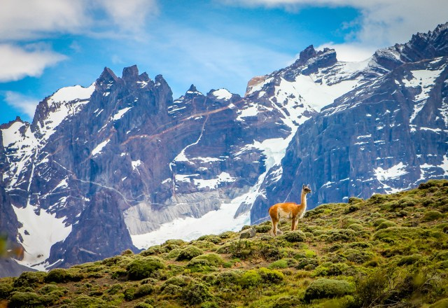 Top 10 National Parks- Torres del Paine National Park