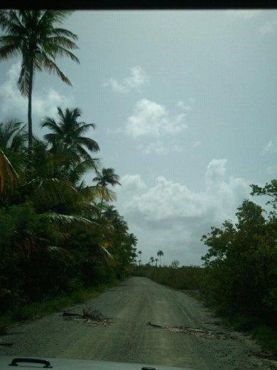 Vieques Car Rental Under